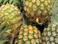Ananas-Likör selbstgemacht