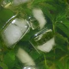 Erfrischenden Eistee mit grünem Tee selber machen - 4 Variationen: Cassis, Ingwer oder Minze, fruchtig mit Orangensaft oder süßsauer mit Zitrone und Limette