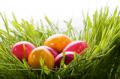 Ostereier mit Lebensmittelfarben färben